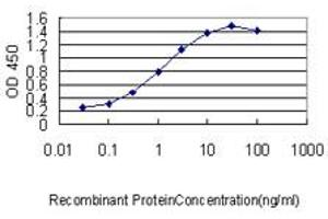 Image no. 5 for anti-Ubiquitin-Conjugating Enzyme E2H (UBE2H) (AA 1-183) antibody (ABIN563322)