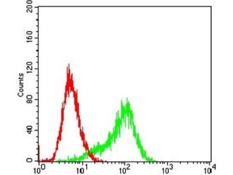 Flow Cytometry (FACS) image for anti-RPS6KA2 antibody (Ribosomal Protein S6 Kinase, 90kDa, Polypeptide 2) (ABIN4351288)