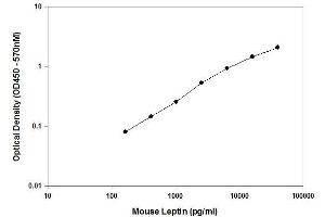 ELISA image for Leptin ELISA Kit (LEP) (ABIN2506965)