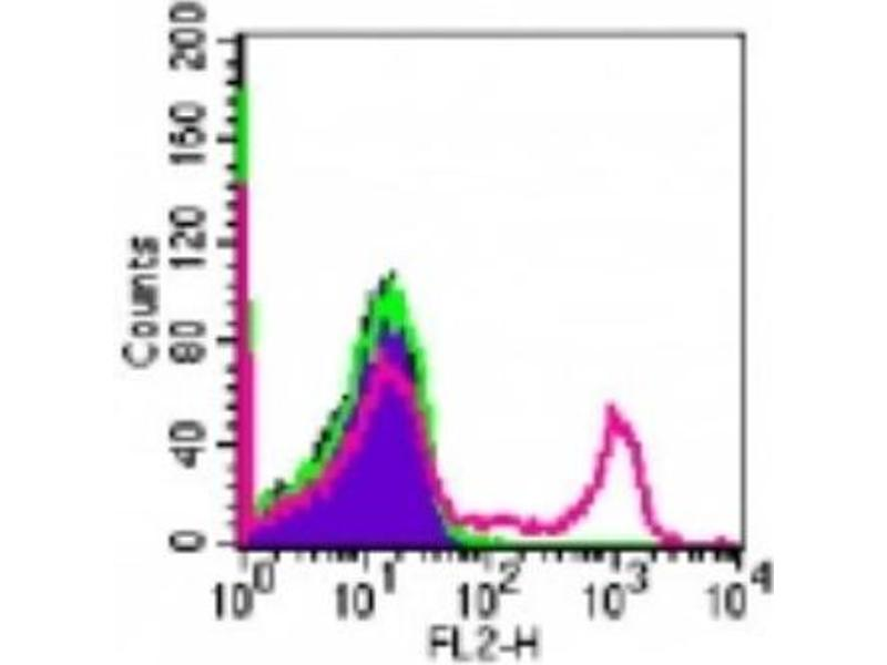 Flow Cytometry (FACS) image for anti-CD8a Molecule (CD8A) antibody (PE) (ABIN4262030)