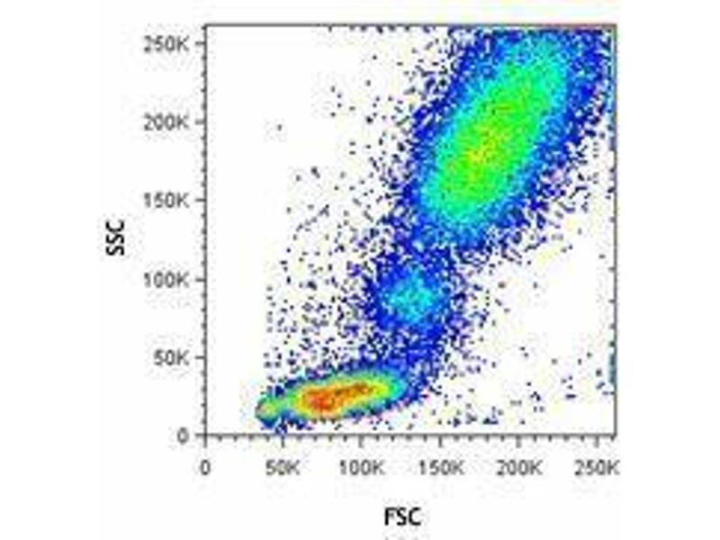 Flow Cytometry (FACS) image for RBC Lysis/Fixation Solution (10X) (ABIN2669206)