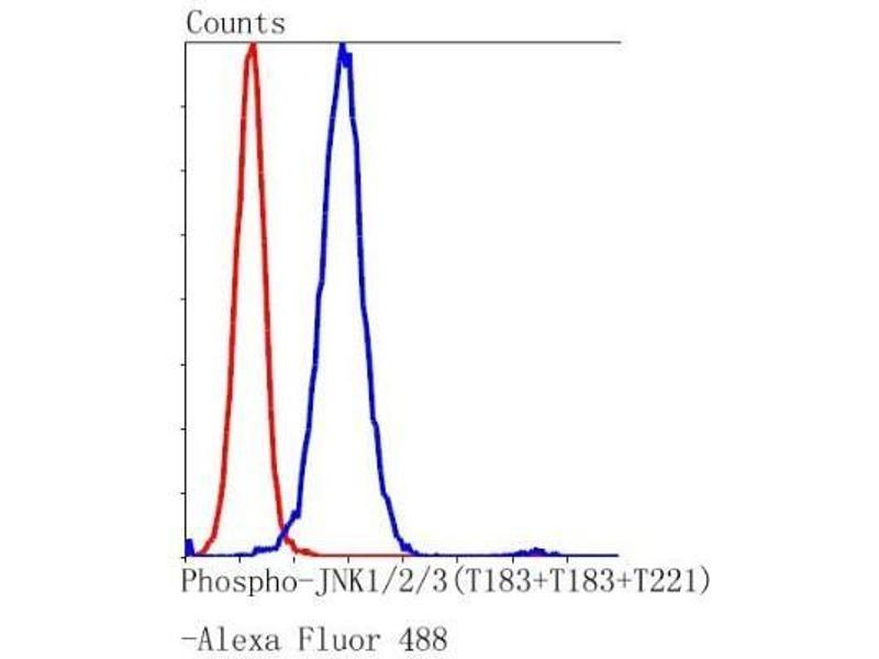 Flow Cytometry (FACS) image for anti-Mitogen-Activated Protein Kinase 8 (MAPK8) antibody (ABIN5950695)