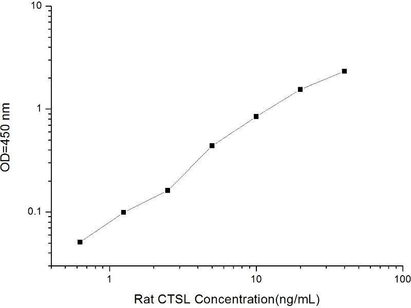 Cathepsin L1 (CTSL1) ELISA Kit (2)