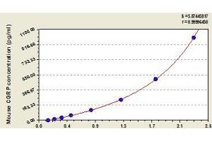 Image no. 1 for Calcitonin-Related Polypeptide alpha (CALCA) ELISA Kit (ABIN1095216)