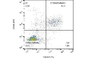 Flow Cytometry (FACS) image for anti-Perforin 1 (Pore Forming Protein) (PRF1) antibody (PE) (ABIN1981897)