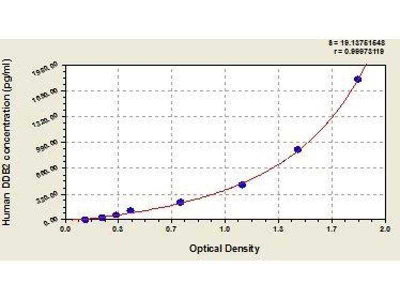 Damage-Specific DNA Binding Protein 2, 48kDa (DDB2) ELISA Kit