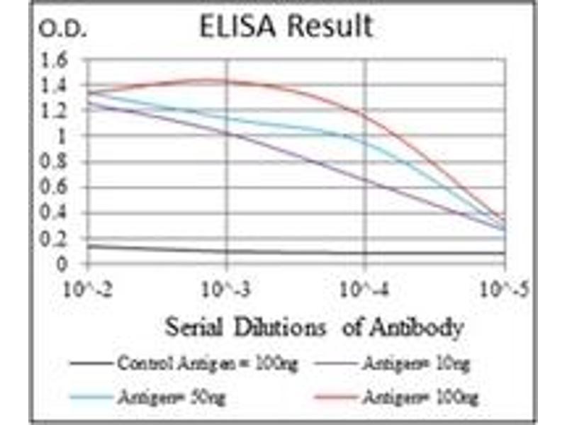 ELISA image for anti-RPS6KB1 antibody (Ribosomal Protein S6 Kinase, 70kDa, Polypeptide 1) (ABIN1108904)