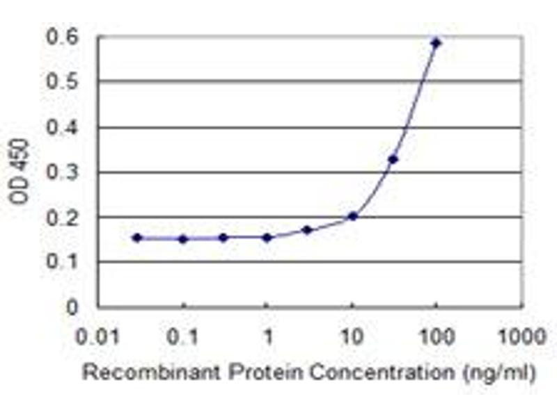 ELISA image for anti-RHOC antibody (Ras Homolog Gene Family, Member C) (AA 1-193) (ABIN513476)