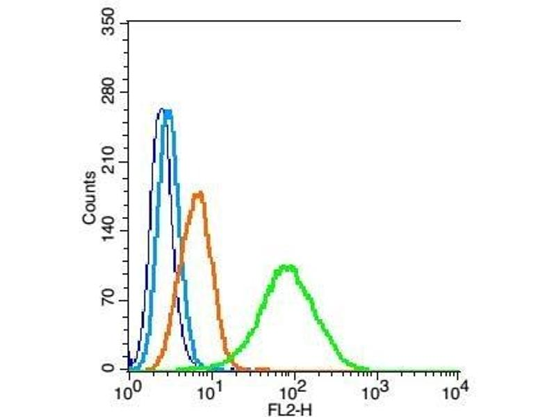 Flow Cytometry (FACS) image for anti-Partner and Localizer of BRCA2 (PALB2) (AA 1100-1150) antibody (ABIN670536)