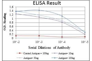 ELISA image for anti-Mitogen-Activated Protein Kinase 3 (MAPK3) antibody (ABIN1844633)