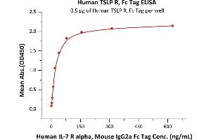 Image no. 1 for Cytokine Receptor-Like Factor 2 (CRLF2) (AA 25-231) (Active) protein (Fc Tag) (ABIN6253631)