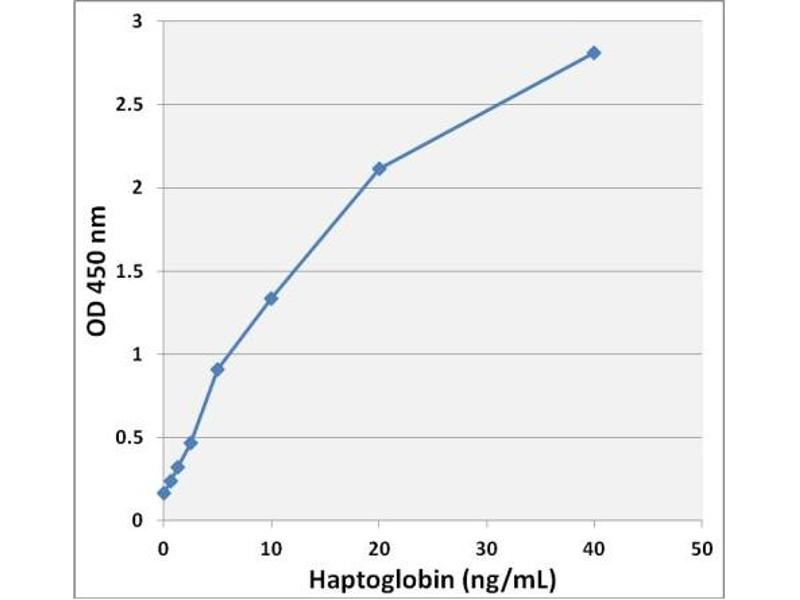 Haptoglobin (HP) ELISA Kit