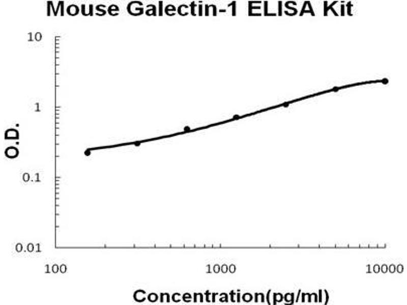 Lectin, Galactoside-Binding, Soluble, 1 (LGALS1) ELISA Kit