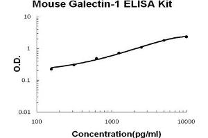 Image no. 1 for Lectin, Galactoside-Binding, Soluble, 1 (LGALS1) ELISA Kit (ABIN921097)