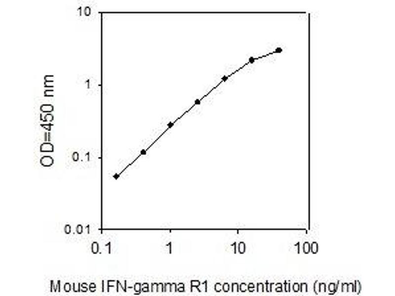 Interferon gamma Receptor 1 (IFNGR1) ELISA Kit