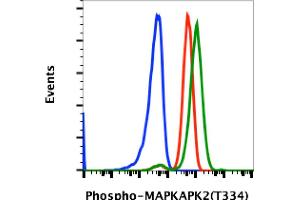 Image no. 1 for anti-Mitogen-Activated Protein Kinase-Activated Protein Kinase 2 (MAPKAPK2) (pThr334) antibody (ABIN5671112)