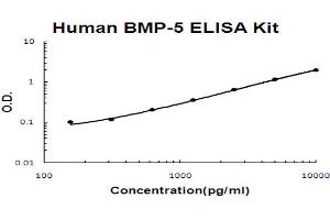 Image no. 1 for Bone Morphogenetic Protein 5 (BMP5) ELISA Kit (ABIN6719905)