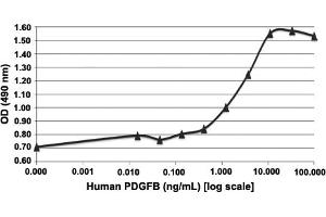 Image no. 1 for Platelet-Derived Growth Factor beta Polypeptide (PDGFB) protein (ABIN5571250)