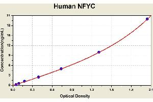 Image no. 2 for Nuclear Transcription Factor Y, gamma (NFYC) ELISA Kit (ABIN1116236)