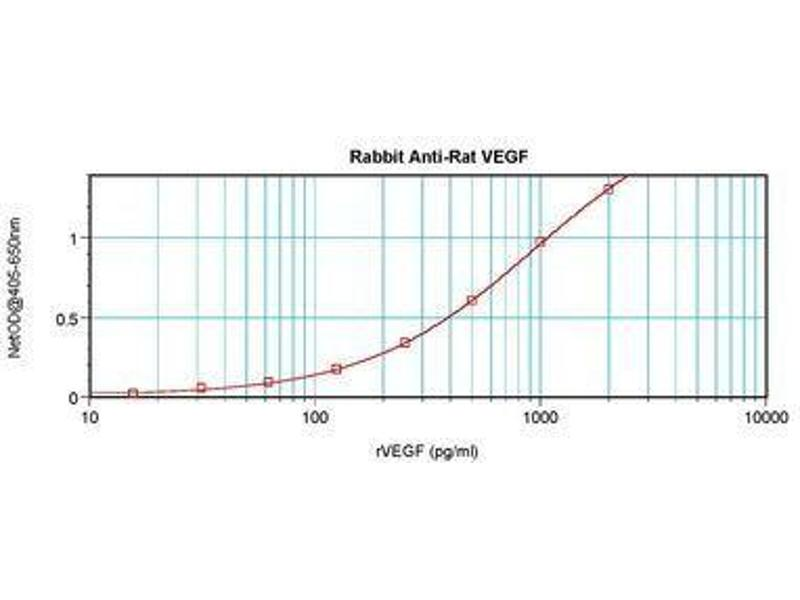 image for anti-VEGF antibody (Vascular Endothelial Growth Factor A) (ABIN465335)