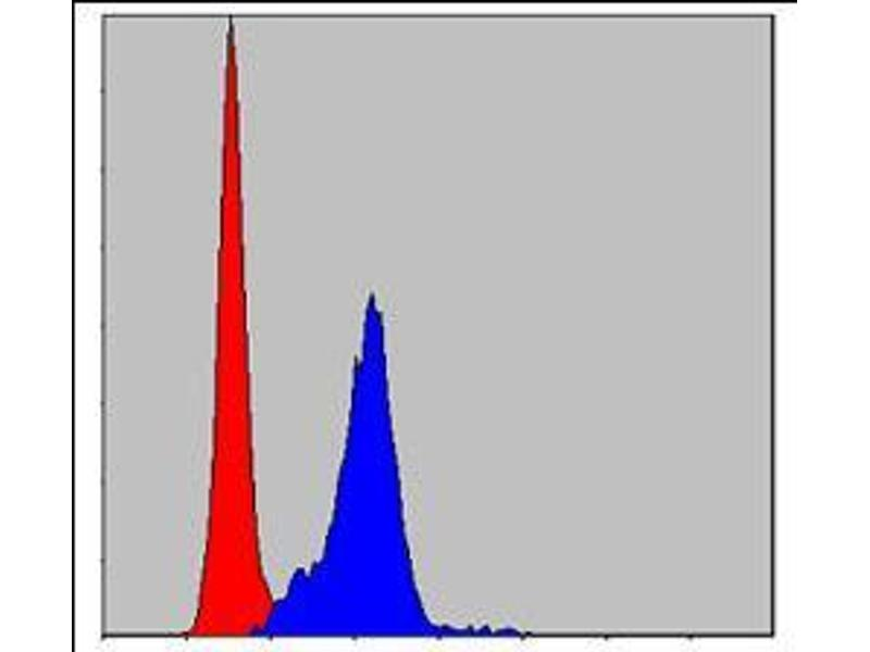 Flow Cytometry (FACS) image for anti-Crk antibody (V-Crk Sarcoma Virus CT10 Oncogene Homolog (Avian)) (ABIN969063)