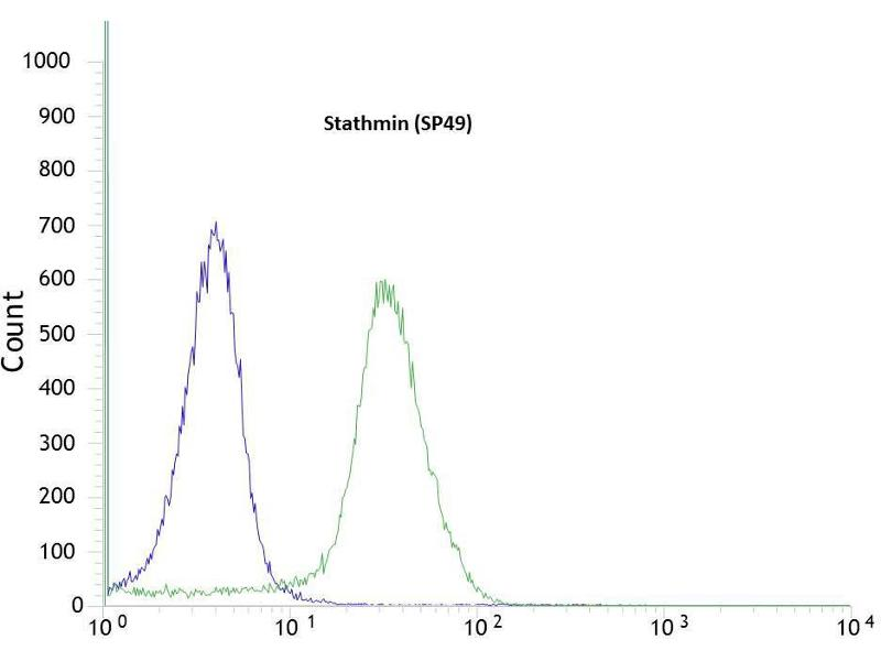 Flow Cytometry (FACS) image for anti-Stathmin 1 antibody (STMN1) (Internal Region) (ABIN1688562)