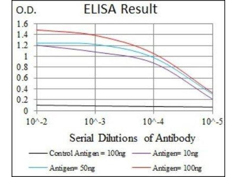 ELISA image for anti-Mitogen-Activated Protein Kinase 8 (MAPK8) antibody (ABIN4327963)