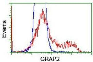 Flow Cytometry (FACS) image for anti-GRAP2 antibody (GRB2-Related Adaptor Protein 2) (ABIN4316111)