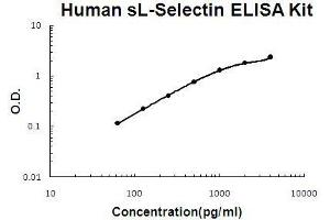 Image no. 1 for Selectin L (SELL) ELISA Kit (ABIN921073)