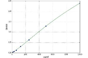 Image no. 1 for Connective Tissue Growth Factor (CTGF) ELISA Kit (ABIN5520367)