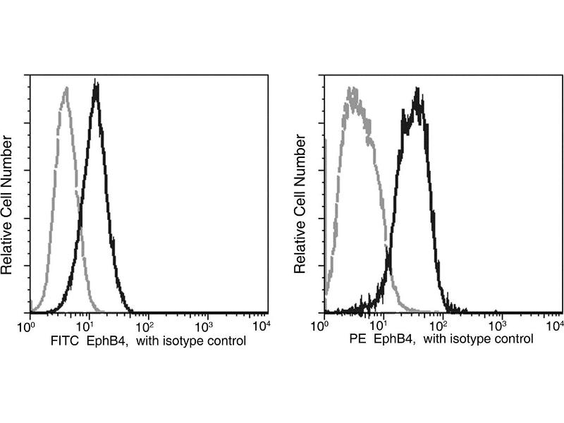 Flow Cytometry (FACS) image for anti-EPH Receptor B4 (EPHB4) (AA 1-539) antibody (FITC) (ABIN1996162)