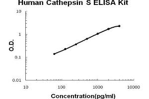 Image no. 1 for Cathepsin S (CTSS) ELISA Kit (ABIN1672865)