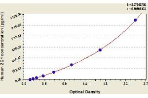 Image no. 1 for Tight Junction Protein 1 (Zona Occludens 1) (TJP1) ELISA Kit (ABIN6974717)