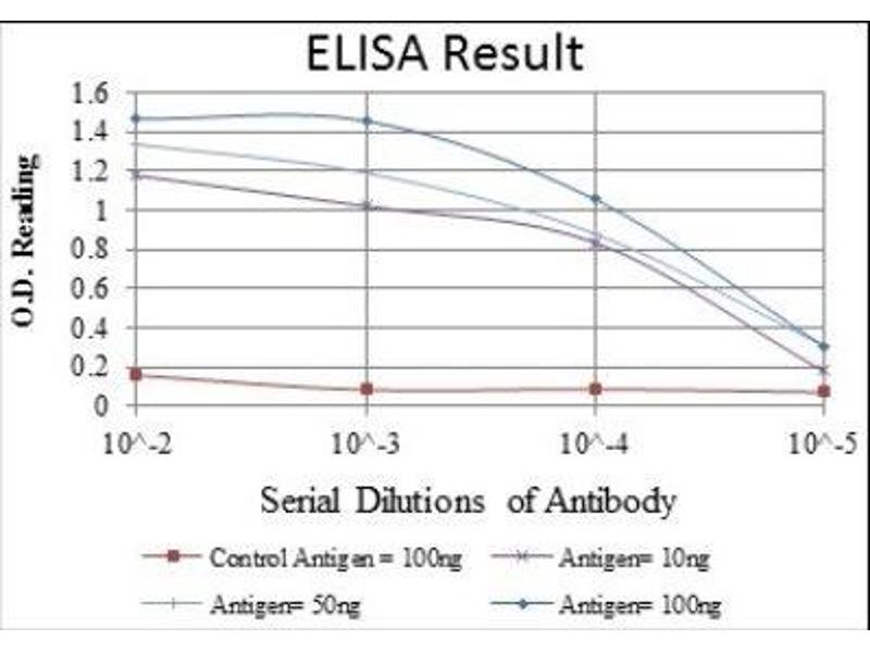 ELISA image for anti-Glucokinase antibody (GCK) (ABIN4274311)