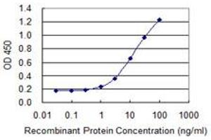 Image no. 2 for anti-Solute Carrier Family 26, Member 3 (SLC26A3) (AA 503-601) antibody (ABIN598654)