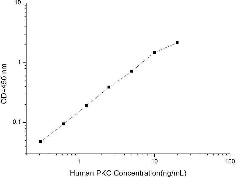 Protein Kinase C (PKC) ELISA Kit