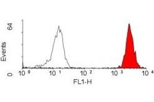 Flow Cytometry (FACS) image for anti-HLA-ABC (HLA-ABC) antibody (ABIN255795)