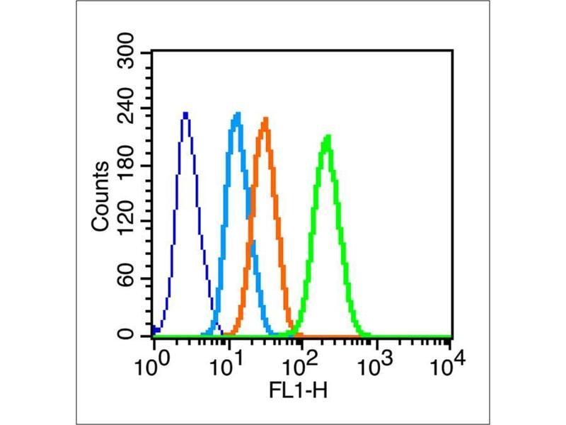 image for anti-Gap Junction Protein, alpha 1, 43kDa (GJA1) (AA 232-282) antibody (ABIN671451)