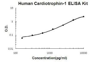 Image no. 1 for Cardiotrophin 1 (CTF1) ELISA Kit (ABIN411375)