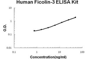 Image no. 1 for Ficolin (Collagen/fibrinogen Domain Containing) 3 (Hakata Antigen) (FCN3) ELISA Kit (ABIN1889410)