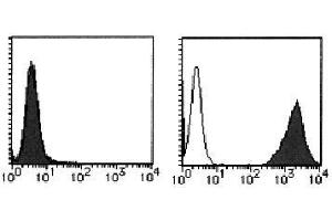 Flow Cytometry (FACS) image for anti-Interleukin 12 Receptor beta 1 (IL12RB1) antibody (PE) (ABIN1449167)