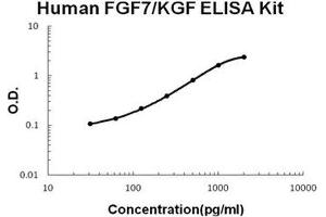 ELISA image for FGF7 ELISA Kit (Fibroblast Growth Factor 7) (ABIN1672808)