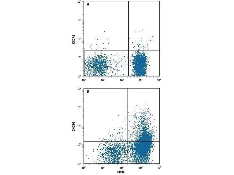 Flow Cytometry (FACS) image for anti-Chemokine (C-X-C Motif) Receptor 6 (CXCR6) (AA 1-342) antibody (ABIN4899064)