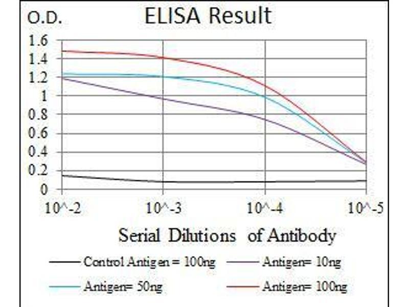 ELISA image for anti-LIM Domain Only 2 (Rhombotin-Like 1) (LMO2) (AA 1-158) antibody (ABIN1098128)