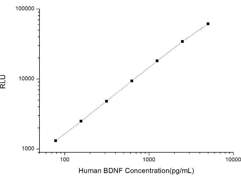 Brain-Derived Neurotrophic Factor (BDNF) ELISA Kit