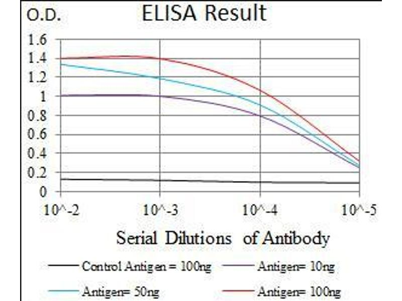 ELISA image for anti-Wolf-Hirschhorn Syndrome Candidate 2 (WHSC2) (AA 280-511) antibody (ABIN1724801)