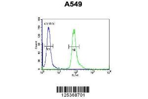 Image no. 1 for anti-Family with Sequence Similarity 46, Member D (FAM46D) (AA 210-239), (Center) antibody (ABIN654949)