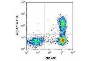 Flow Cytometry (FACS) image for anti-Interleukin 2 (IL2) antibody (FITC) (ABIN2661943)