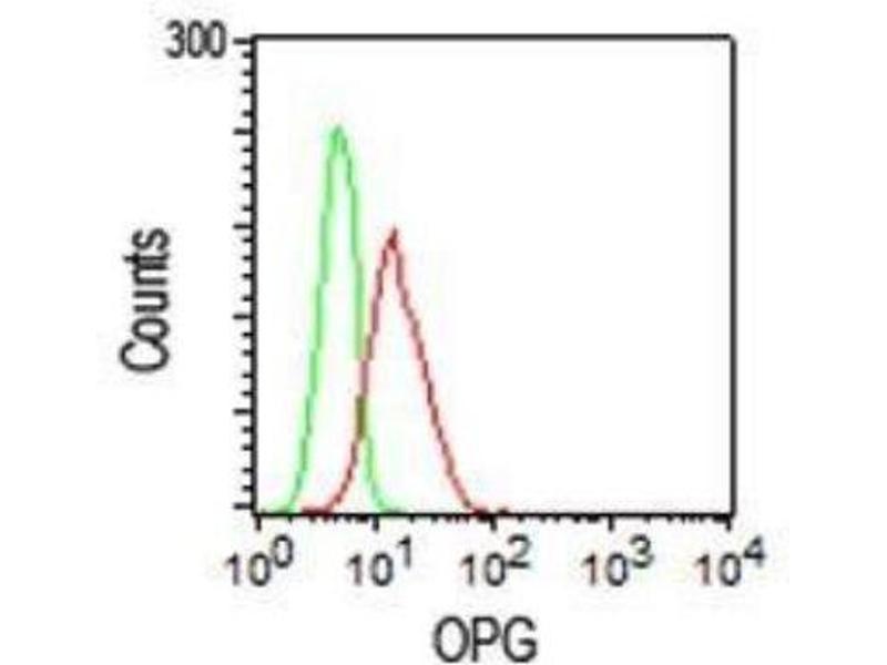 Flow Cytometry (FACS) image for anti-Tumor Necrosis Factor Receptor Superfamily, Member 11b (TNFRSF11B) (AA 20-37) antibody (ABIN252469)