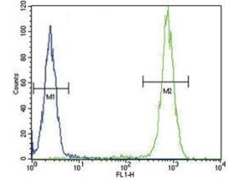 Flow Cytometry (FACS) image for anti-Interleukin 4 (IL4) (AA 122-150) antibody (ABIN3031478)